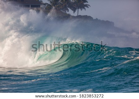 perfect surfing wave in hawaii Royalty-Free Stock Photo #1823853272