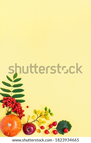 Autumn composition. Orange pumpkin, red apple, rowan branch, hawthorn fruits, autumn leaves on yellow background with copy space tor your text. Top view. Flat lay. Vertical. Royalty-Free Stock Photo #1823934665