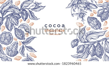 Cocoa frame. Vector nature graphic background. Art hand drawn botanical tree, bean, tropical fruit, foliage. Organic sweet food, aroma drink, natural chocolate. Vintage pattern #1823960465
