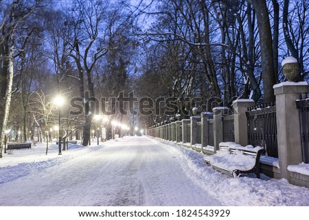 Night winter landscape in the alley of city park Royalty-Free Stock Photo #1824543929