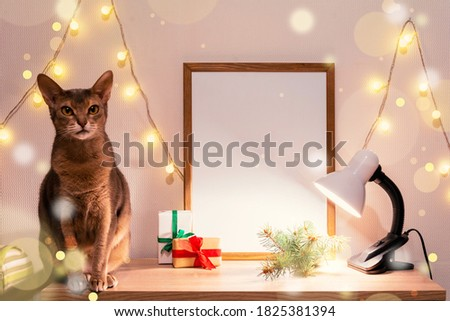 Christmas poster frame mock up. Abyssinian cat green fir branches red paper gift boxes lights garland lamp. Wooden empty frame white background. Home new year decor concept copy space mock up banner
