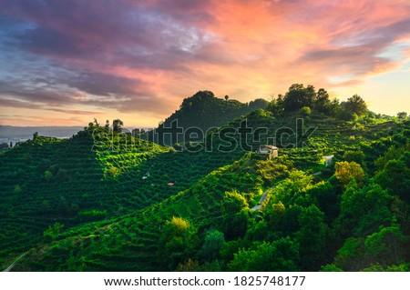Prosecco Hills, vineyards and San Lorenzo church at sunset. Unesco Site. Farra di Soligo. Veneto, Italy, Europe. Royalty-Free Stock Photo #1825748177