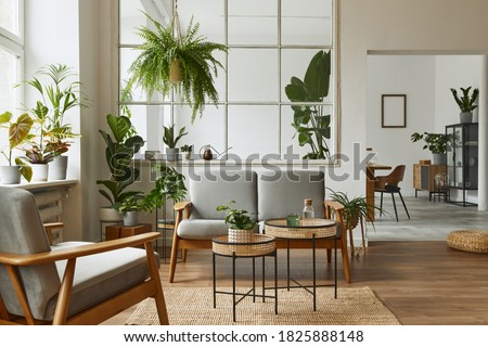 Modern scandinavian interior of living room with design grey sofa, armchair, a lot of plants, coffee table, carpet and personal accessories in cozy home decor. Template. Royalty-Free Stock Photo #1825888148