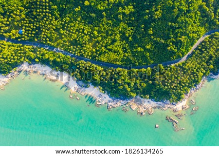 High angle view of  road pass through coconut tree forest and beautiful coastline in Khanom, Nakhon si thammarat, Thailand Royalty-Free Stock Photo #1826134265