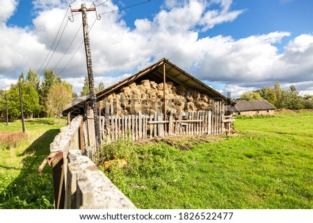 Hay storage with harvested bales of hay for cattle. Agricultural barn canopy with bales hay in summer #1826522477