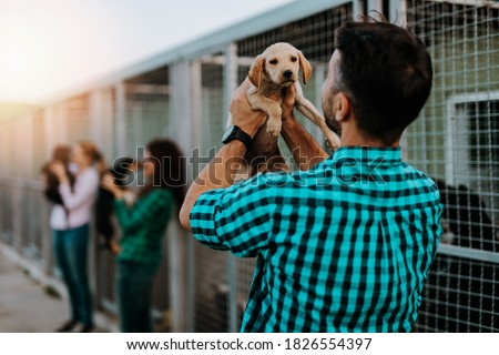 Young nice looking couple wants to adopt beautiful dog at animal shelter. Royalty-Free Stock Photo #1826554397