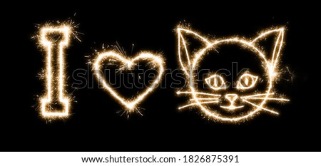Inscription with sparklers on a black background I love cats
