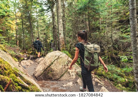 Hikers walking on forest trail with camping backpacks. Hiker woman from behind hiking in autumn fall nature woods. Group of tourists wearing backpacks outdoors trekking on mountain. Royalty-Free Stock Photo #1827084842