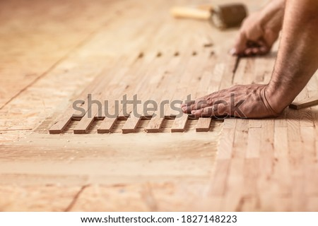 Craftsman on work laying parquet flooring installation of parquet. laying parquet flooring, Pad applied with glue for parquet. #1827148223