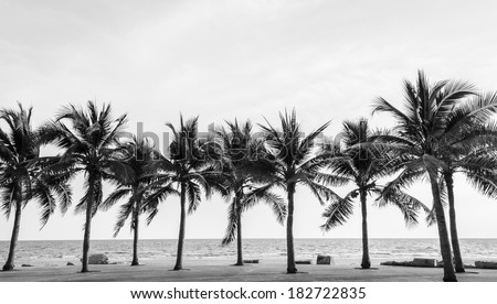 Black & White view of Beautiful beach with palms, Thailand Royalty-Free Stock Photo #182722835