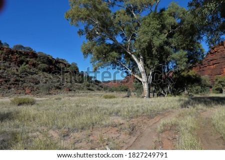 Finke River Track to Palm Valley Northern Territory Central Australia Royalty-Free Stock Photo #1827249791