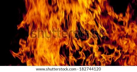 fire flame close-up shot #182744120