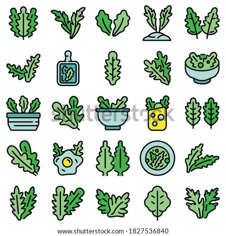 Arugula icons set. Outline set of arugula vector icons thin line color flat on white #1827536840