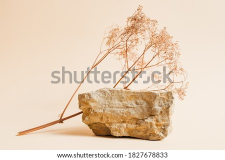 Stone podium with dried flowers for displaying products or cosmetics. Eco trends. Place for text Royalty-Free Stock Photo #1827678833