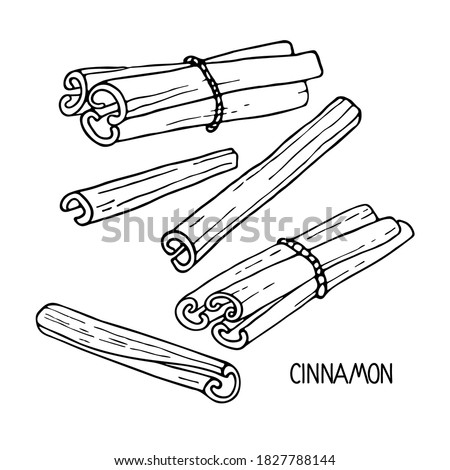 Cinnamon sketch set. Hand drawn vector spices cinnamon sticks. Medicinal, cosmetic, culinary plants. Doodle Outline illustration. For cafe, spice shop, menu. Organic and fresh cooking. Royalty-Free Stock Photo #1827788144