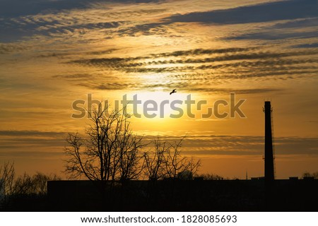 Gorgeous panorama scenic of the strong sunrise with silver lining and cloud on the orange sky. Royalty-Free Stock Photo #1828085693
