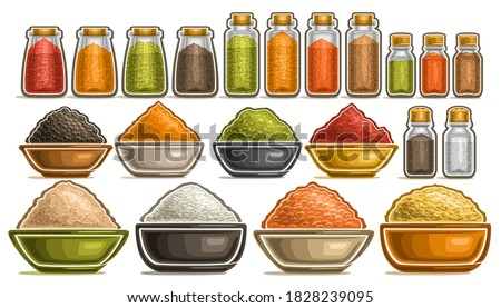 Vector Set of different Spices, collection of isolated illustrations with healthy cereals in pots, diverse fresh hot spices in dishes, group of assorted dried seasonings in glass containers on white. #1828239095