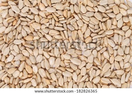 Background of sunflower seeds. Whole background. White seeds. #182826365