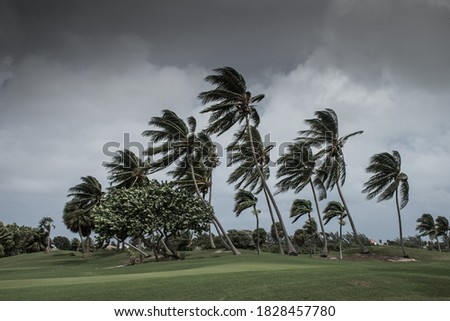 Hurricane Delta tearing up the coastline of Grand Cayman