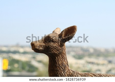 Deer picture with blur background Blue sky