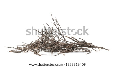 Dry twigs, branches isolated on white background Royalty-Free Stock Photo #1828816409