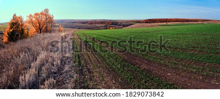 Panoramic landscape of central Russia agricultural countryside with hills and country road. Autumn landscape of the Samara valleys. Russian countryside. High resolution file for large format printing.