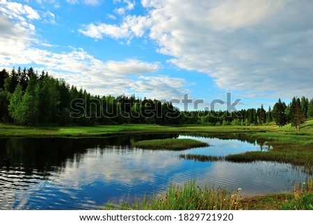 river in the forest in Arkhangelsk region #1829721920