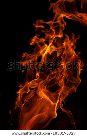 Close-up vertical picture of an isolated bright and hot orange flame with numerous of tongues on the black background