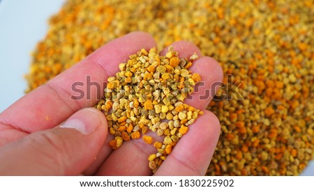 a lot of close-up flower pollen,fresh bee pollen, natural vitamin source, empowering bee pollen, Royalty-Free Stock Photo #1830225902