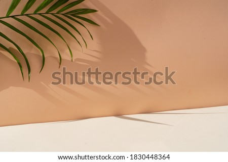 Minimal modern product display on textured beige background with palm shadows overlay Royalty-Free Stock Photo #1830448364