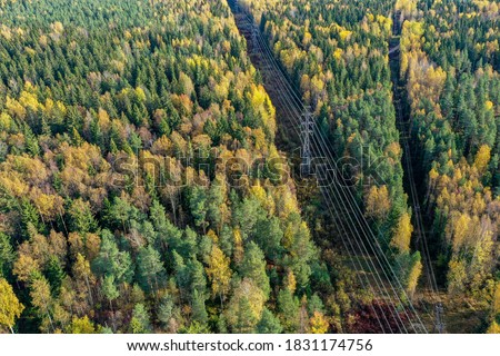 Above view of autumn colored forest with power lines  Royalty-Free Stock Photo #1831174756