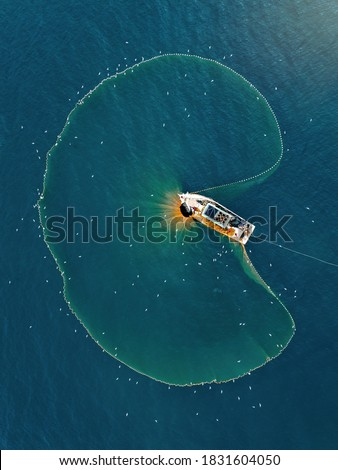 Aerial view fisherman catching fish using net at the ocean. Royalty-Free Stock Photo #1831604050