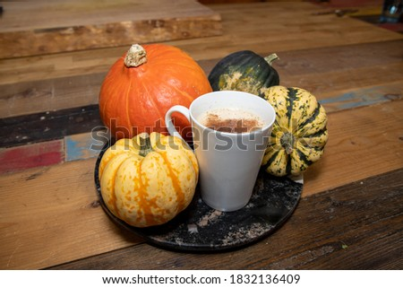 A  Pumpkin Spice Latte in a white cup surrounded by pumpkins on a wooden kitchen work top #1832136409