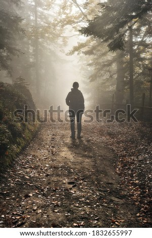 woman in the woods. tourist walking in the misty autumn forest