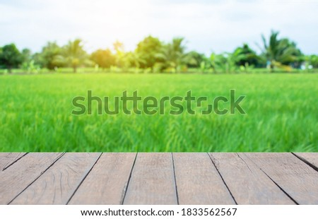 Old wooden table, field background, trees and sky: for placing items and adding text with emphasis on the desktop as the foreground. Empty brown wood shelf