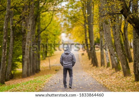 Young man in gray warm clothes slowly walking through alley of trees in yellow autumn day at park. Spending time alone in nature. Peaceful atmosphere. Back view.  Royalty-Free Stock Photo #1833864460