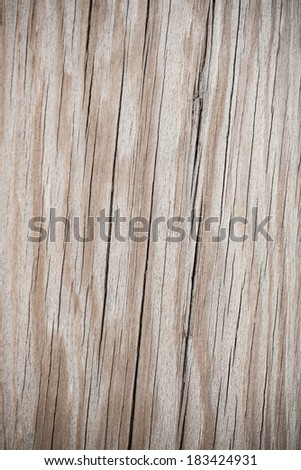 Old wood. Background. #183424931