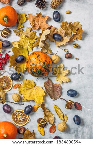 Autumn still life with pumpkins. Autumn composition flat lay. Pumpkins, plums, fallen leaves, acorns, chestnuts on a blue background, top view. Autumn harvest concept, thanksgiving day background Royalty-Free Stock Photo #1834600594