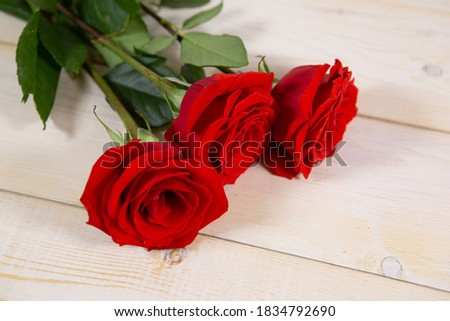 Three red roses on a light wooden background is the best gift for Valentine's day or mother's day. Photo with a copy of the space for your caption on the background
