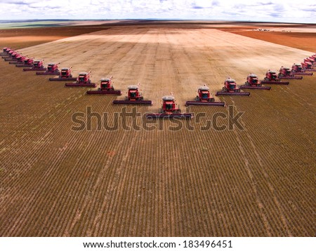 MATO GROSSO, BRAZIL - MARCH 02, 2008: Mass soybean harvesting at a farm in Campo Verde #183496451