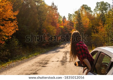 Young woman hanging out of a car window and looking at the road ahead, with autumnal trees in the background #1835012056