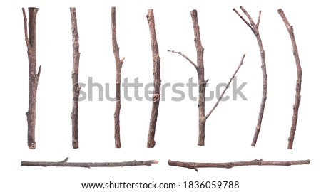 set of dead dry twigs shaped brown bark Isolated on white background Royalty-Free Stock Photo #1836059788