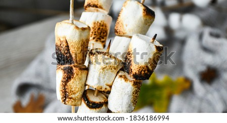 Marshmallow skewers Marshmallows On A Stick Roasting close up. White camping marshmallow. Sweater autumn background. Camping Fall Fun Concept #1836186994