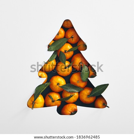 Christmas minimal concept - xmas tree silhouette made with fresh tangerine. Square composition, flat lay, view from above. Christmas decoration. Winter season.