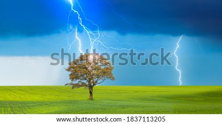 Bright lightning hit the tree with green grass field - Stormy sky with thunderbolt over rural landscape Royalty-Free Stock Photo #1837113205