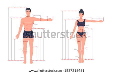 An adult human body size chart. Measurements for tailoring clothes. A measure of a man, a woman. People standing in a full length with one arm spread out. A vector cartoon illustration.