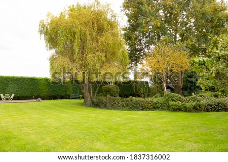 Well-maintained lawn and private gardens seen after the large lawn area was cut. A large stock of trees and bushes are visible.