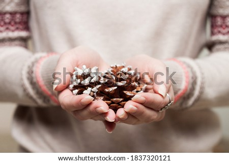 Woman in gray winter sweater holding pinecones in hands  Royalty-Free Stock Photo #1837320121