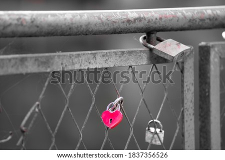 Red heart shaped padlock locked on a bridge fence. Symbol of love placed there during the wedding. Lock meant to be there forever and the key thrown in to the water. Black and white image red heart