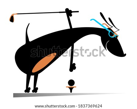 Cartoon dog plays golf illustration. Smiling dog holds a golf club and puts a ball on the stand isolated on white